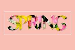 Текст цветков весной Стоковые Изображения