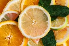 текст цитруса предпосылки готовый Много кусков листьев лимона, апельсина, известки и мяты лежат совместно серия плодоовощей Витам Стоковые Фотографии RF