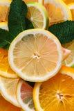 текст цитруса предпосылки готовый Много кусков листьев лимона, апельсина, известки и мяты лежат совместно серия плодоовощей Витам Стоковая Фотография