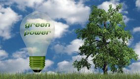 Текст экологической энергии в электрической лампочке и дереве - концепции экологичности Стоковая Фотография