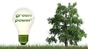 Текст экологической энергии в электрической лампочке и дереве - концепции экологичности Стоковые Фотографии RF