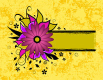текст grunge рамки цветка Стоковое Изображение RF