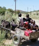 Тележка осла приезжает на стоп страны для того чтобы собрать ребеят школьного возраста Стоковое фото RF