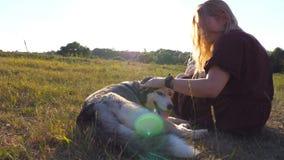 Тележка сняла красивой девушки сидя на зеленой траве на поле и штрихуя ее собаку сибирской лайки на заходе солнца 15 детенышей же акции видеоматериалы