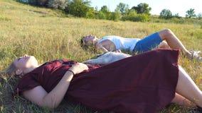 Тележка сняла молодых пар в влюбленности лежа на зеленой траве на поле и штрихуя их собаку сибирской лайки на солнечном дне акции видеоматериалы