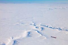 Тележки в тундре зимы сверху Стоковое Изображение RF