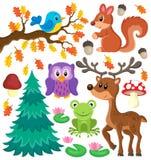 Тема животных леса установила 1 Стоковые Фото