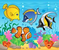тема изображения 3 рыб Стоковое Фото