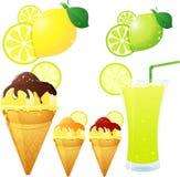 тема лимона Стоковые Изображения