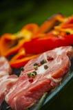 Тема огня и приготовления на гриле с зажаренной едой Стоковая Фотография