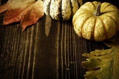 Тыквы и листья осени Стоковые Фотографии RF