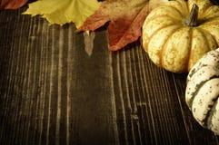 Тыквы и листья осени Стоковые Изображения
