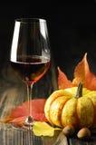 Тыквы, красное вино и листья осени Стоковые Фотографии RF