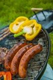 Тема приготовления на гриле с веществом барбекю Стоковые Фотографии RF