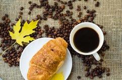 тема разрешения изображения цветка кофе высокая Стоковые Фото
