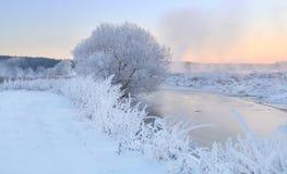 Тема рождества зимы Стоковая Фотография