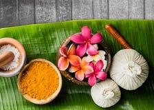 тема спы frangipani цветка шара Стоковая Фотография