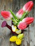 Тема цветка пасхи Стоковые Фото