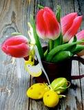 Тема цветка пасхи Стоковые Фотографии RF