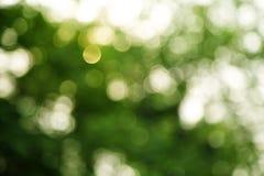 Темная ая-зелен и белая предпосылка Стоковое фото RF