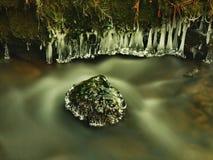 Темная ая-зелен холодная вода потока горы в зимнем времени, малых сосульках. Стоковые Фото