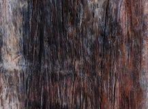 Темная деревянная текстура стоковое фото rf