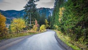 Темная дорога гор в Tatras на осени в Польше Стоковое Изображение RF