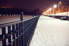 темная морозная зима парка ночи Морозная зима в темном парке Стоковое фото RF