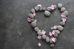 Темная предпосылка курорта с камешками и цветками Стоковые Фото