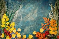 Темная предпосылка осени от листьев осени космос экземпляра предпосылки осени Стоковое Изображение RF