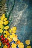 Темная предпосылка осени от листьев осени космос экземпляра предпосылки осени Стоковое Изображение