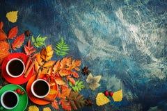 Темная предпосылка осени с 3 чашками кофе и листьями осени Стоковое Фото