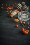 Темная предпосылка рождества с свечами и ягодами золы горы Конусы белой сосны Разветвляют жолуди Стоковое фото RF