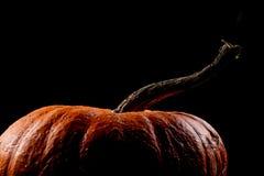 Темная тыква стоковая фотография rf