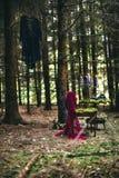 Темная фантазия в пейзаже леса в лесе стоковая фотография