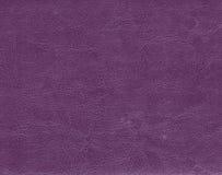 Темная фиолетовая кожаная текстура Стоковая Фотография