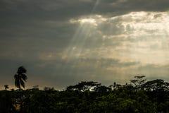 темное небо Стоковая Фотография