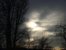 Темное ноябрь Стоковое Изображение RF