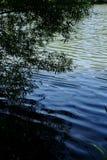 темное озеро Стоковые Изображения