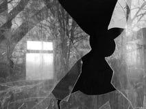 Темное отражение Стоковое фото RF