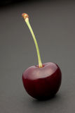 темнота вишни Стоковое Изображение