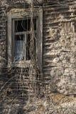 Темнота в окне Стоковая Фотография