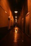 темнота переулка Стоковое Изображение