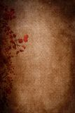 Темнота предпосылки текстуры листьев осени бумажная Стоковое фото RF