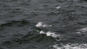 Темнота развевает в море сток-видео