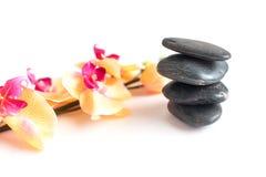 Темнота 4 - серый камень и яркая орхидея разветвляют Стоковая Фотография