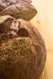темнота хлеба отрезала Стоковые Фотографии RF