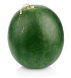 Темно - зеленая ягода арбуза стоковое изображение rf