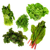 темно - зеленые густолиственные овощи Стоковая Фотография