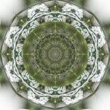 Темно-синая мандала фрактали на светлой предпосылке Шальные абстрактные формы фрактали с kaleidoscopical картиной бесплатная иллюстрация